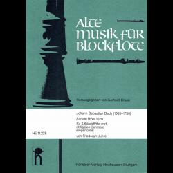 Bach - Sonate BWV 1020 pour flûte à bec alto et clavecin obligato
