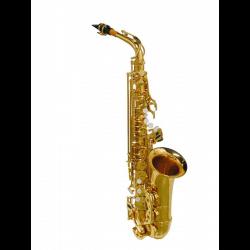 Saxophone alto Stewart Ellis 510-L