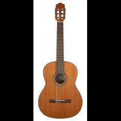 Salvador Cortez CC-22 klassieke gitaar (4/4 tot 1/2)