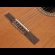 Guitare classique Salvador Cortez CC-22 (4/4 à 1/2)
